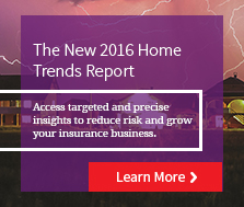 The LexisNexis Home Trends Report ‒ 2016