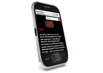 LexisNexis® Mobile Website Personalization