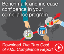 True Cost of AML Compliance Report
